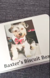screen-shot-2016-10-04-at-1-00-49-am
